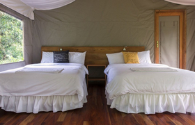 Twin Room Scalesia Lodge