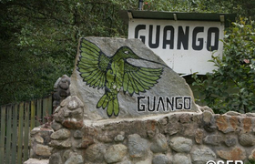 Guango Lodge