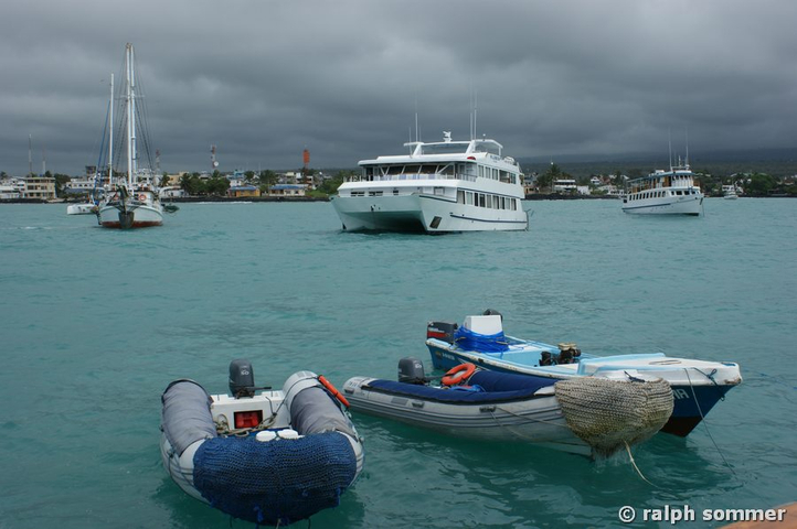 Boote in Puerto Ayora, Galapagos
