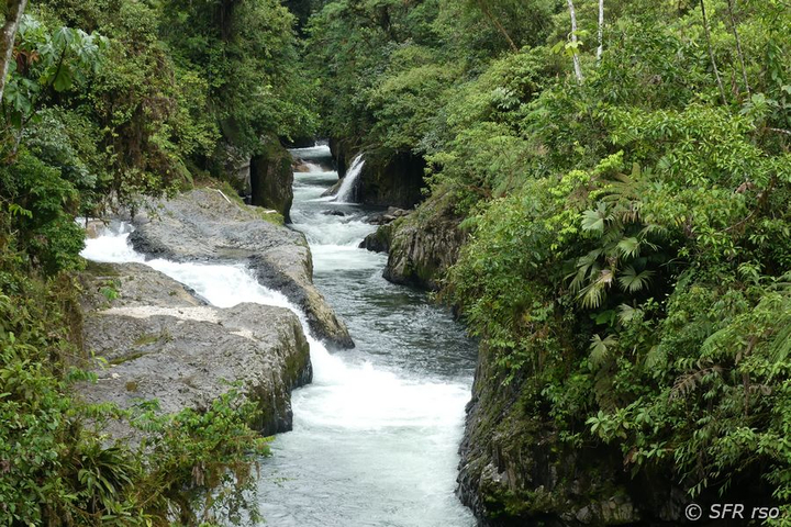 Vulkanfluss in Nationalpark Sumaco in Ecuador