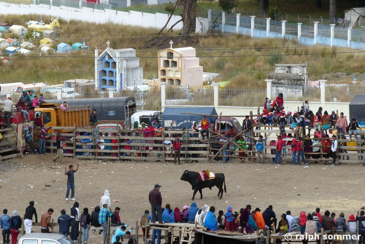 Fest Toros in Zumbahua in Ecuador